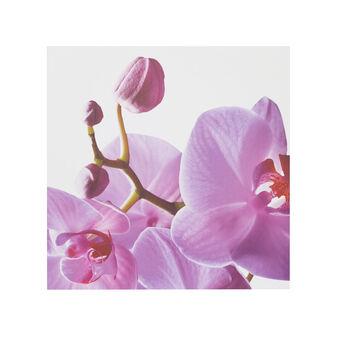 Tela con stampa floreale