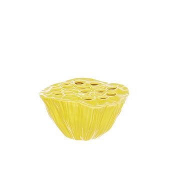 Loto ceramica lucida