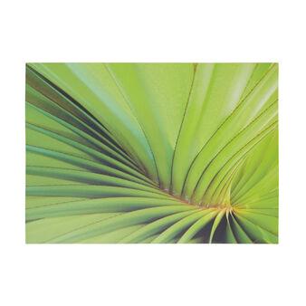 Tela stampa foglia di palma