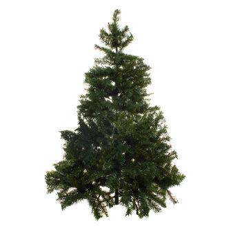 Albero di Natale Canada con rami folti H210 cm